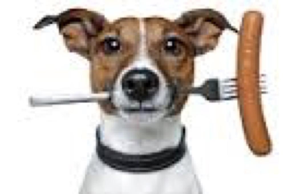 hond worst